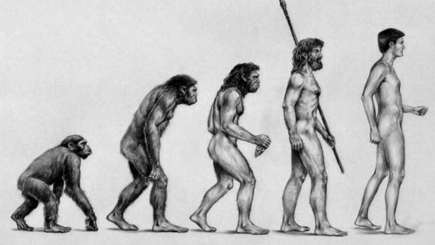 La extinción de una especie ha permitido el desarrollo de otra.