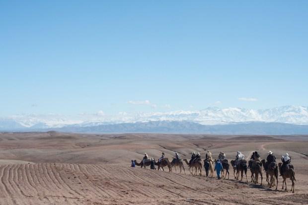 Los invitados disfrutaron del paisaje en el desierto de Agafy
