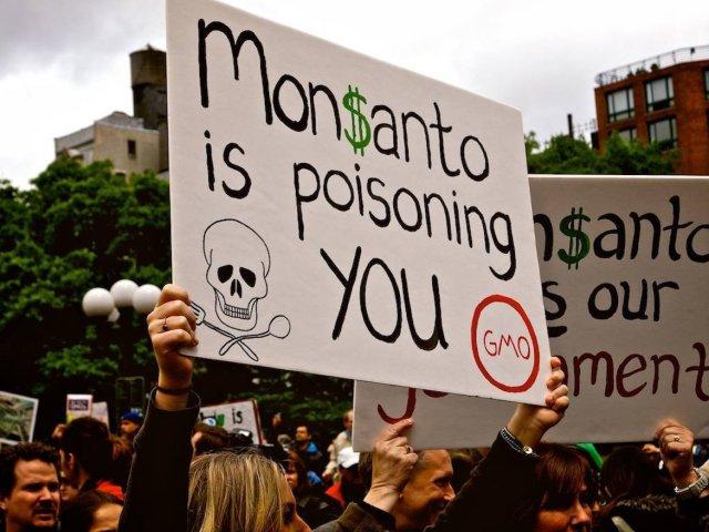 """""""Monsanto te está envenenando"""" asegura un manifestante, en medio de una protesta en contra de los alimentos genéticamente modificados"""