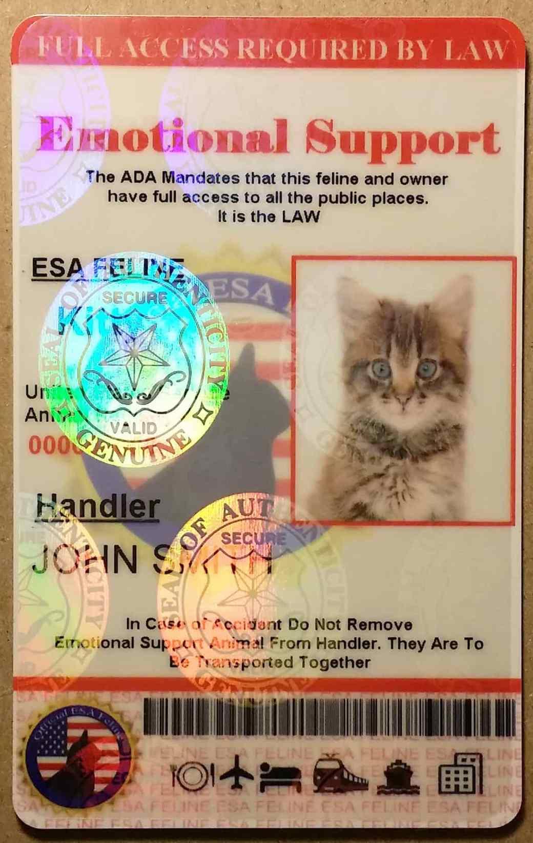Los dueños de animales de apoyo emocional deben llevar consigo una tarjeta de identificación en todo momento