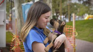 Con esta medida se busca promover la adopción de mascotas (Foto: Gustavo Gavotti)