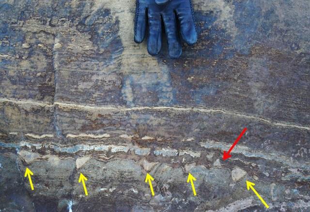 """El nuevo informe asegura que las estructuras """"crónicas"""" identificadas previamente como estromatolitos fosilizados no son realmente crónicas. (Abigail Allwood/NASA vía revista """"Nature"""")"""