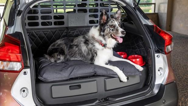 El nuevo diseño del vehículo está hecho especialmente para el perro pueda viajar cómodo, ademas de venir con espacios destinados especialmente para llevar las correas y todos los elementos que se necesiten.