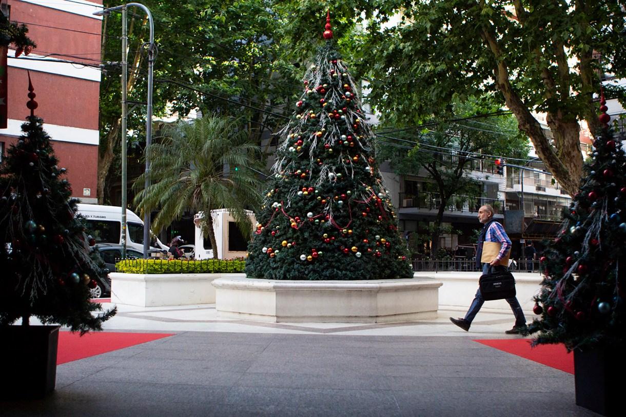 En la entrada del paseo de compras hay un árbol gigante