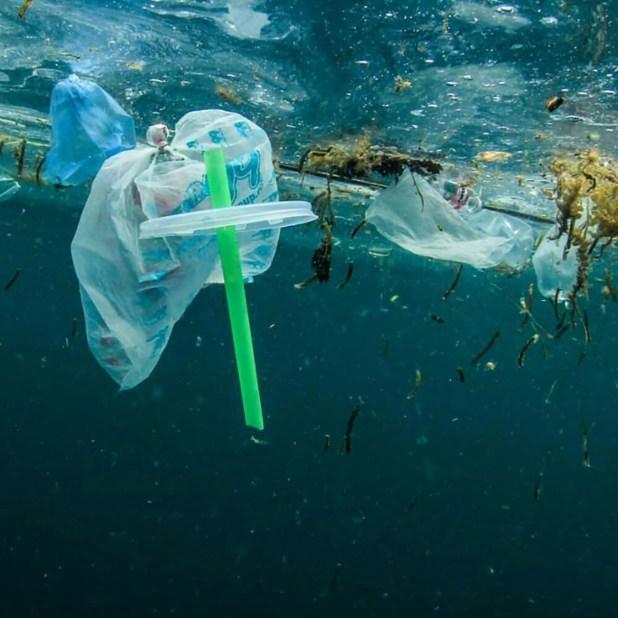 Los plásticos abandonados en las playas o flotando en el mar terminan reduciéndose a partículas pequeñas con gran capacidad de dispersión