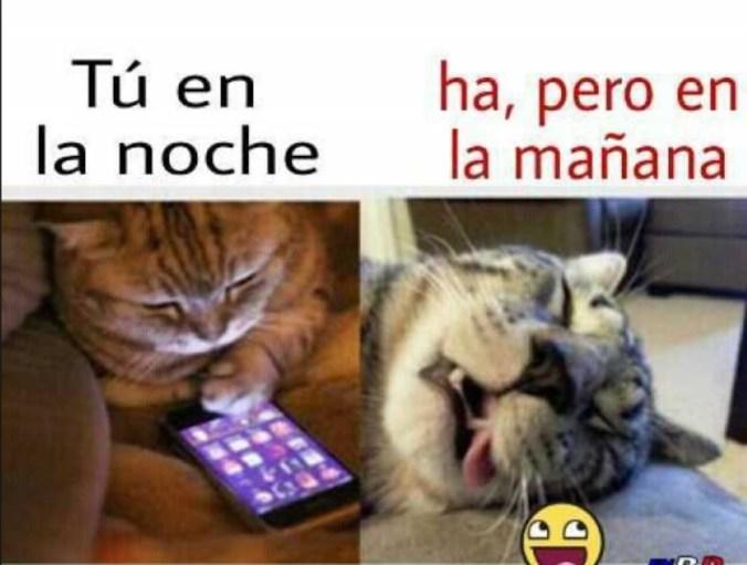 Foto: (Facebook)