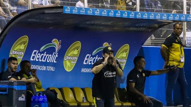 Dorados de Sinaloa se encuentra a un paso de clasificar a los playoffs por el ascenso (Photo by RASHIDE FRIAS / AFP)