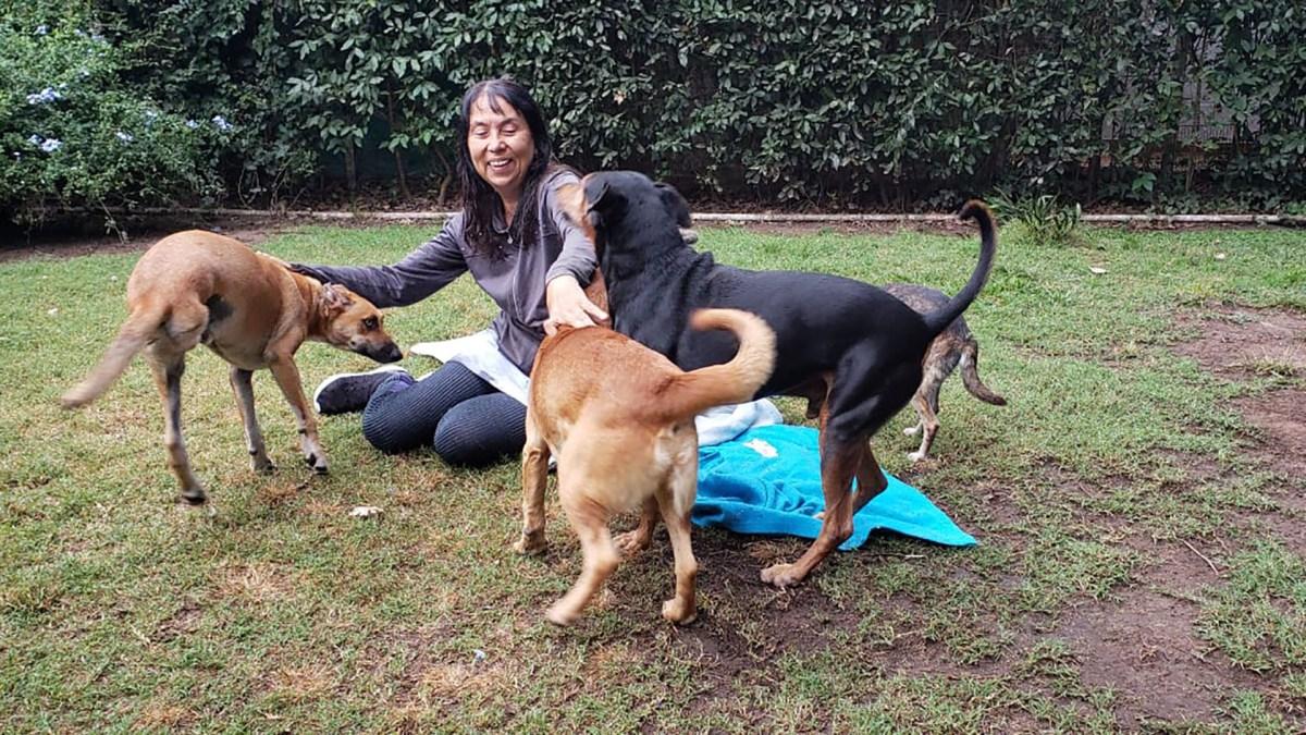 Alicia Barreto es veterinaria, rescata animales desde niña y en 2006 fundó su propio refugio.