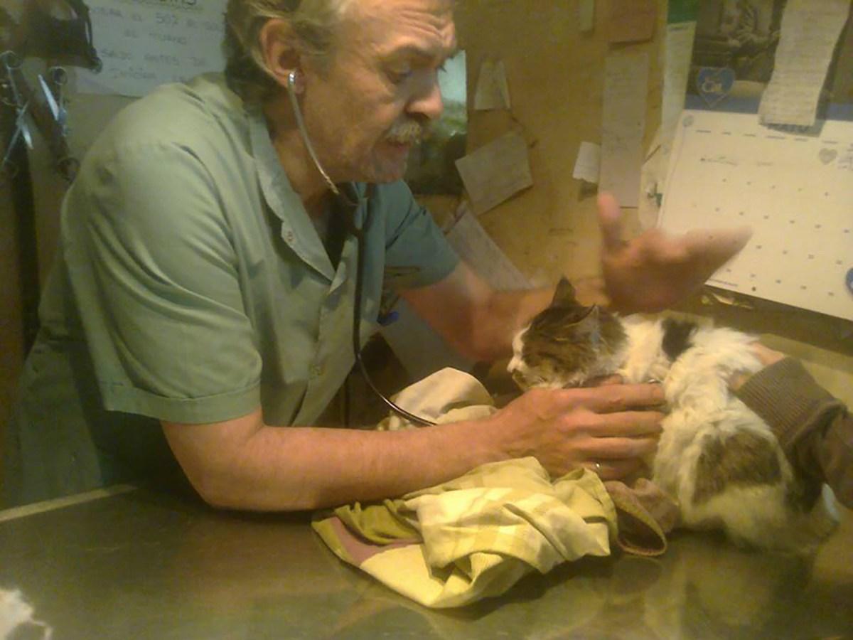 """En plena labor en la veterinaria """"Mayo"""". Allí atiende a muy bajo costo y en miles de casos, gratis, por su genuino amor a los animales."""