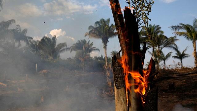La preocupación llegó a los países vecinos (REUTERS/Bruno Kelly)