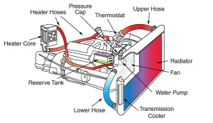 Checking Your AC and Coolant Systems  Know Your Parts