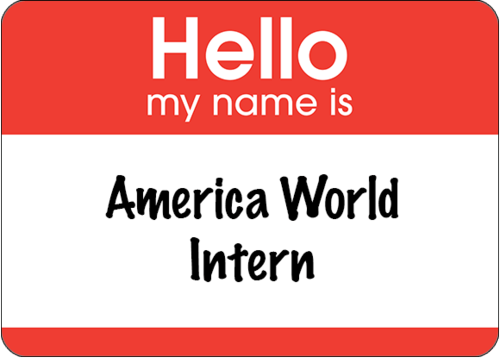 AWAA Intern copy