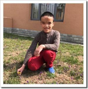 adoption agencies china