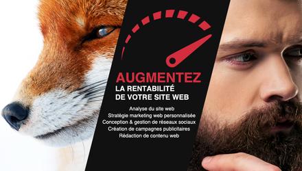 Futé Marketing - Agence web