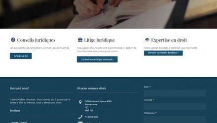 Conception site web WordPress, SEO, SEM