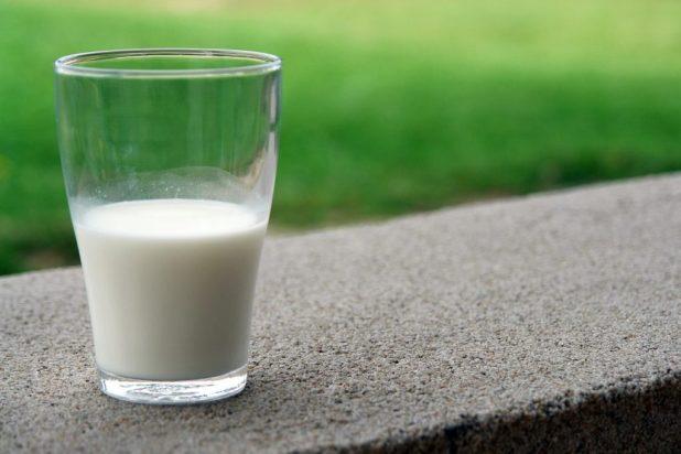 a cup of raw milk. raw milk benefits