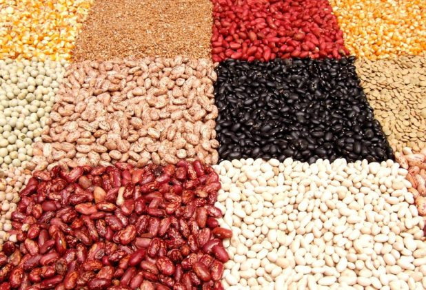 various beans and legumes