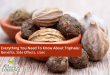 Everything You Need To Know About Triphala: Benefits, Side Effects, Uses