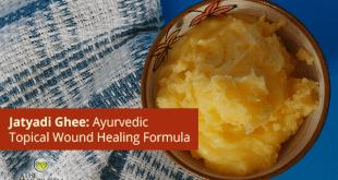 Jatyadi Ghee Or Jatyadi Ghrita: Ayurvedic Natural Wound Healing Formula