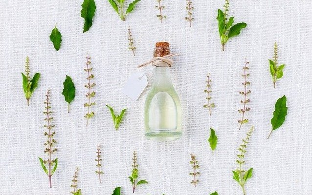 Tulsi (Holy Basil): Tulsi Benefits, Uses, Research, Contraindications, How To Take Tulsi