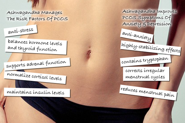 How Ashwagandha Helps PCOS