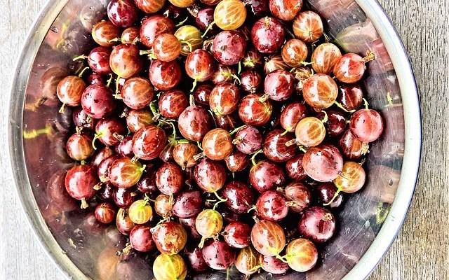 Amla: The Sour, Anti-Aging Ayurvedic Super Fruit + Amla Recipes