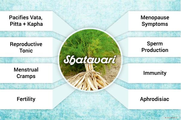 A list of Shatavari benefits.