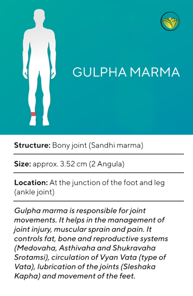 Gulpha Marma, Marma points of the feet.