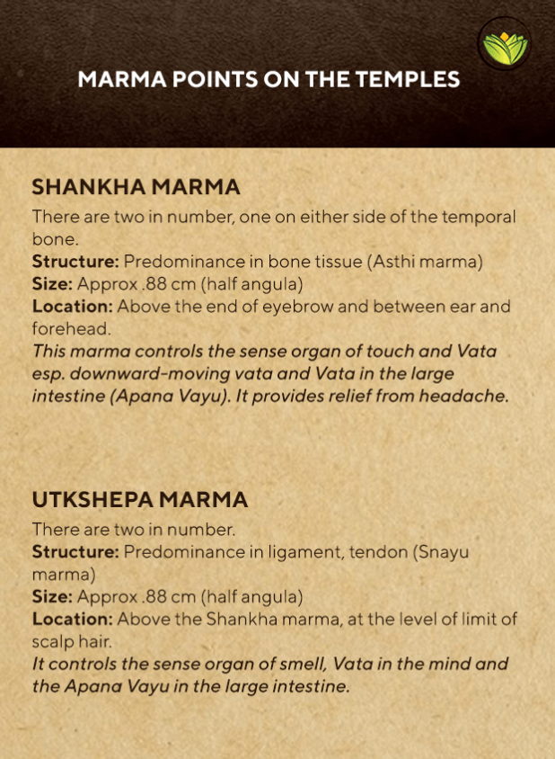 Marma points of the temple, for sore temples, temple headache relief, temple pain.