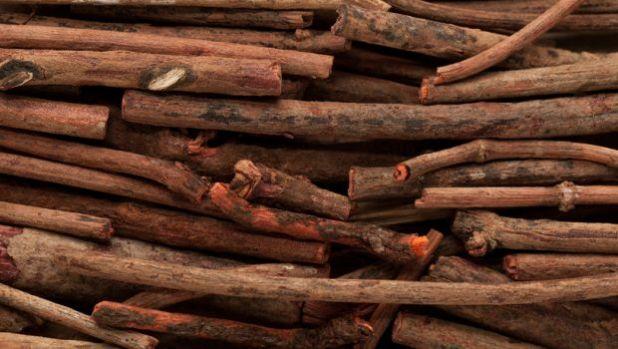 manjistha benefits uses dosage side effects manjishta for skin