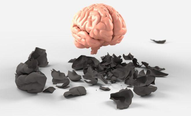 herbs brain benefits