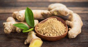 dry ginger powder benefits uses