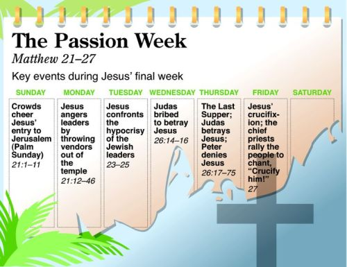 NIV QuickView Bible - Passion Week