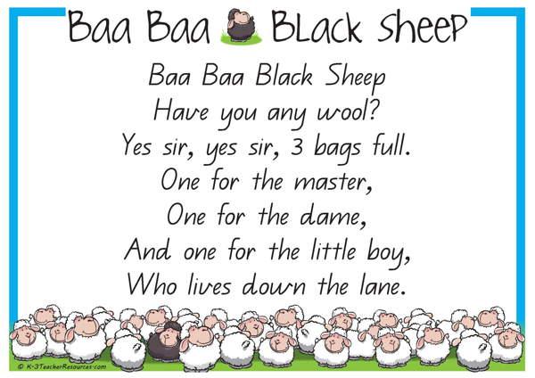 baa-baa-black-sheep-qld_page_1