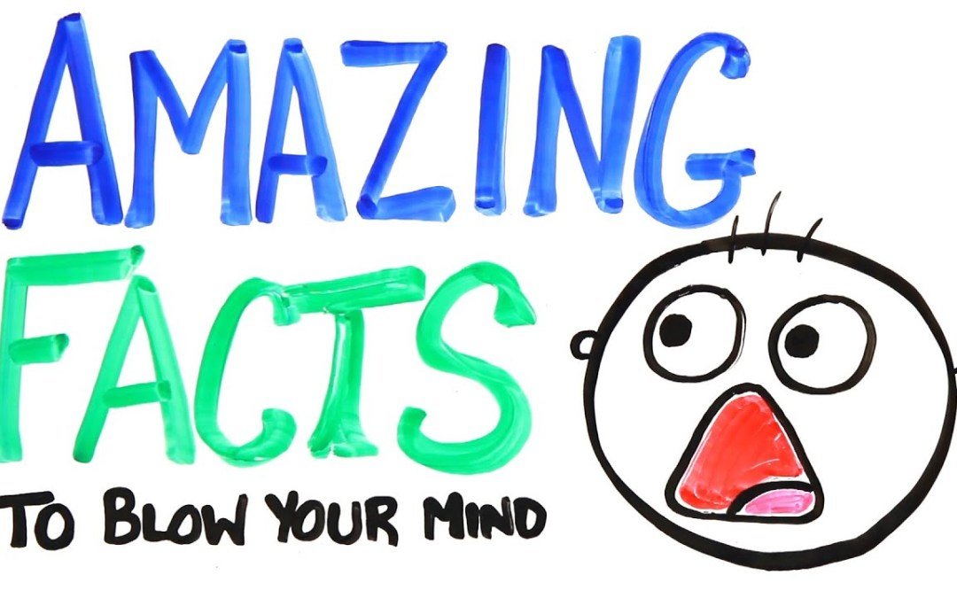 4 Amazon Facts to Blow Your Mind