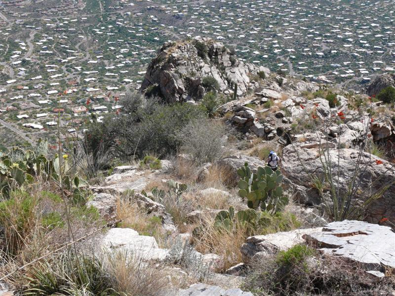 ADT hiking up Pontatoc Ridge
