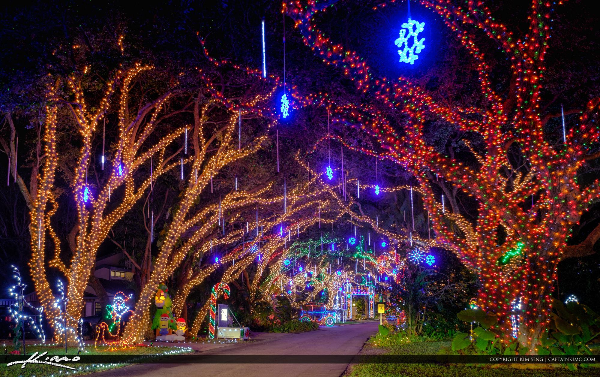 Christmas Lights Amazon