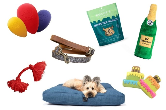 Global Pet Expo: The Best New Pet Products for 2019