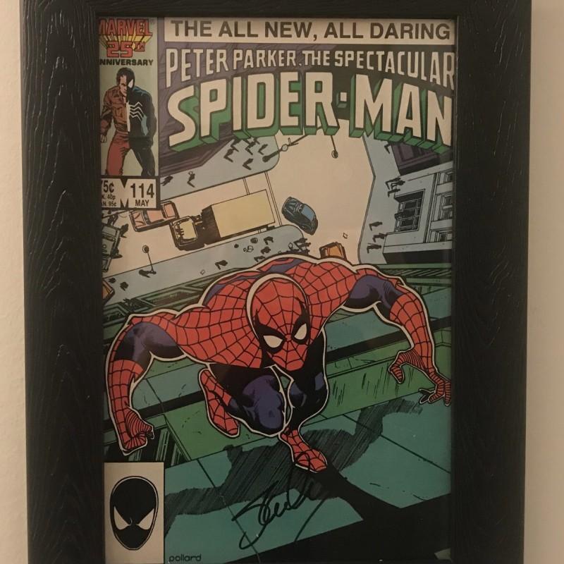 stan lee signed and framed spider man