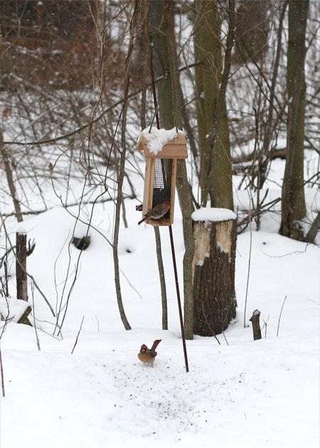 small-birdfeeder