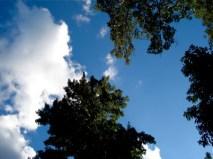 blue-skies-2
