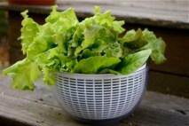 basket-of-lettuce