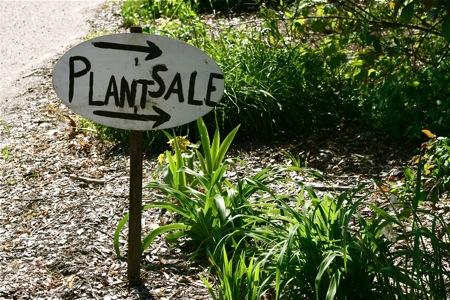 plant-sale-sign