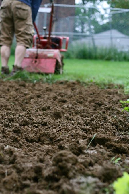 tilling-the-garden