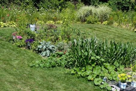 Mom's_veggie_garden