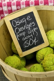osage_oranged_at_market