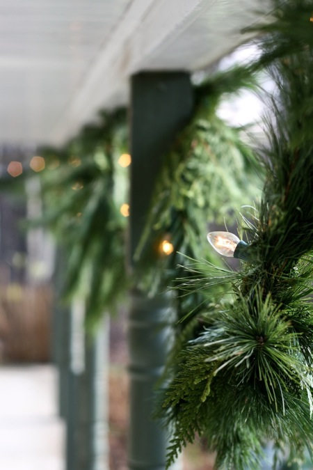 fresh_Pine_garland_with_white_lights