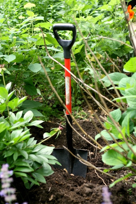 shovel_in_flowerbed