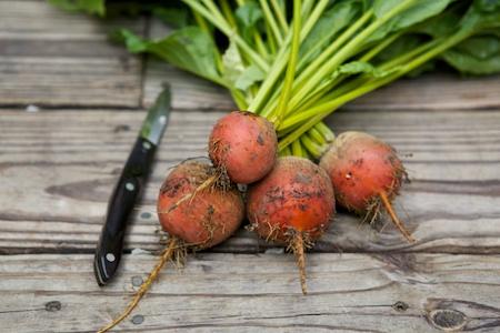 edible garden harvest 4