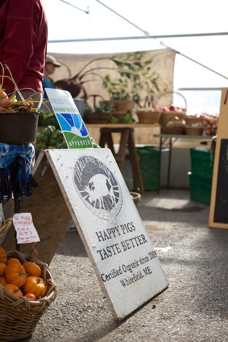 Belfast Farmers Market 5